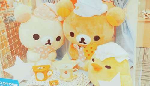 cute, photography, rilakkuma