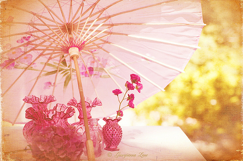 flower, flowers, japan, photography, pink, umbrella, vintage