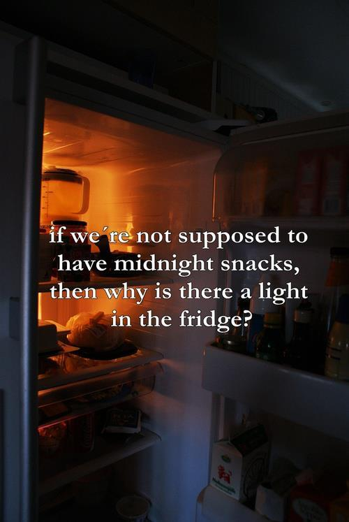fridge, lol, midnight snack, text, yumm