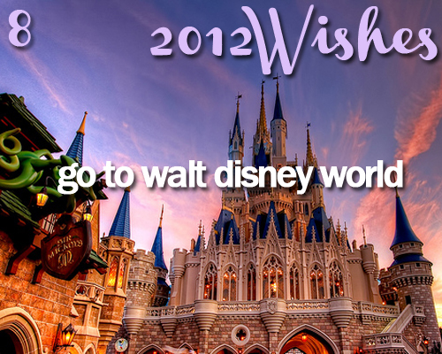 2012, 2012 wishes, disney world, fun, kid