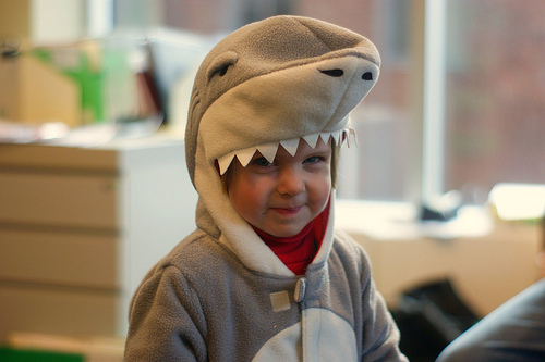 adorable, amazing, baby, baby shark, beautiful