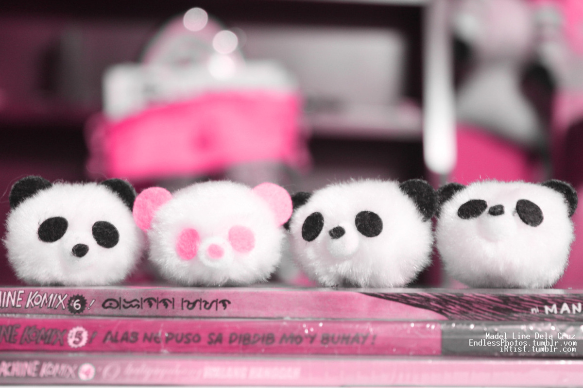 adorable, cute, fluffy, panda, pink