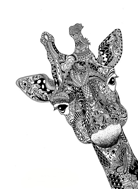 animal, art, giraffe, illustration, pen&ink