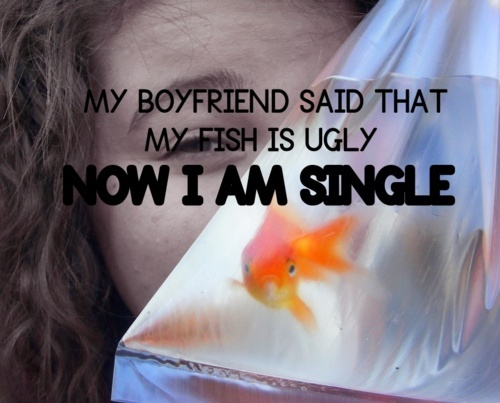 animal, boyfriend, curly hair, fish, funny