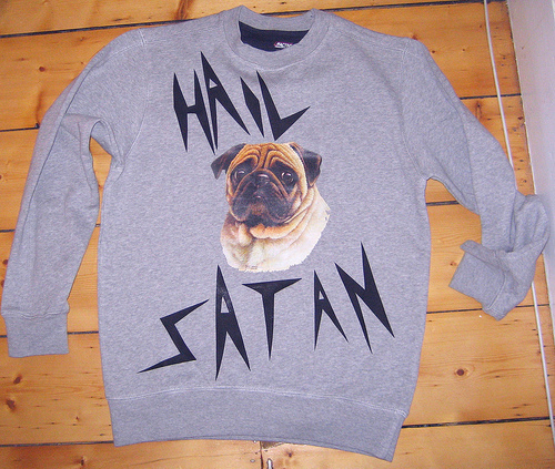 art, clothes, crewneck, dog, fashion, funny, hail satan, photo, photography, puppy, satan, sweater, typography