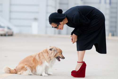 awesome, beautiful, cool, cute, dog, dress, fashion, girl, gorgeous, heels, lovely, photo, red shoes, shoes