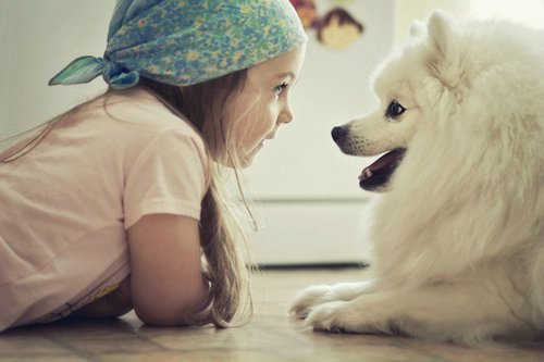 baby, cute, dog, girl, white