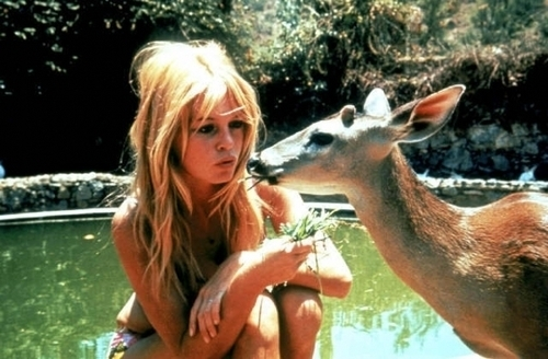 bambi, blonde, deer, girl, park, pretty, summer, sun