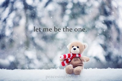 bear, ivaa stojcic, love, photography, red, snow, teddy, text, typography, winter