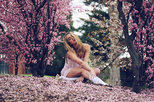 beautiful, blonde, flowers, girl, pink flowers