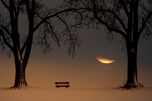bench, landscape, moon, photography, scene, snow, tree