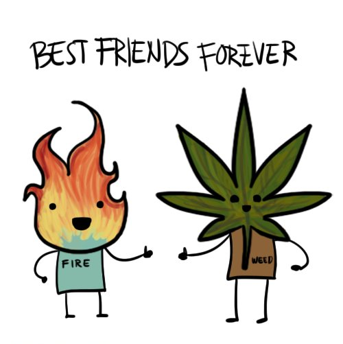 Best Friends Cartoon Fire Funny Smoke