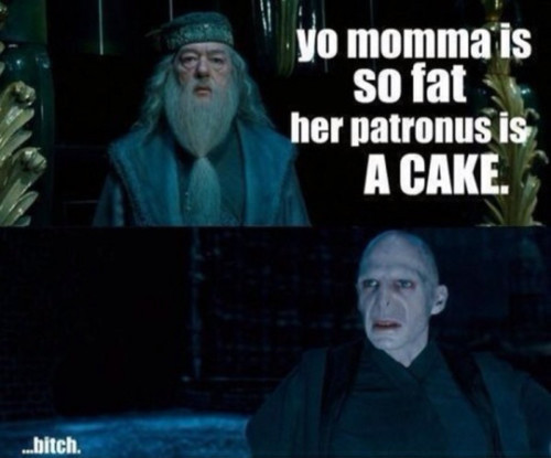 bitch, dumbledor, funny, harry potter, quotes