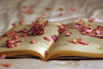 books, flowers, girly
