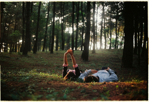 boy, couple, girl, hands, nature, trees, woods