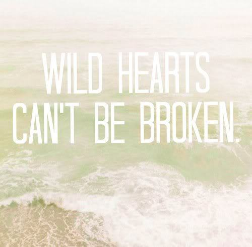 broken, heart, message, text, wild hearts, words