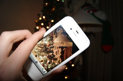 camera, christmas, christmas tree, color, hand