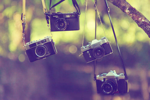 camera, mini, photography, small, sweet, vintage