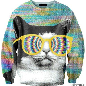 cat, cats, hipster, retro, sweater, sweaters