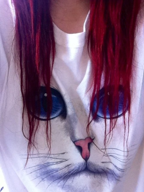 cat, cute, jumper, red hair
