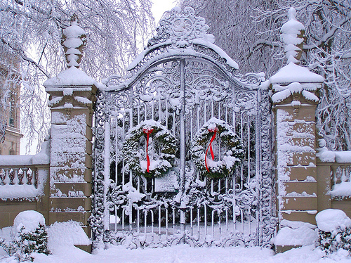 christmas, gate, photography, snow, winter