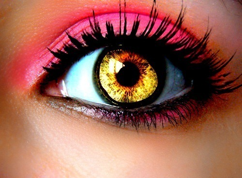 colorful eye, eye shadow, eyes, girl, gold, hazel eyes, make up, pink, pretty, strong