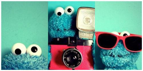 cookie, cute, elmo, love, nice