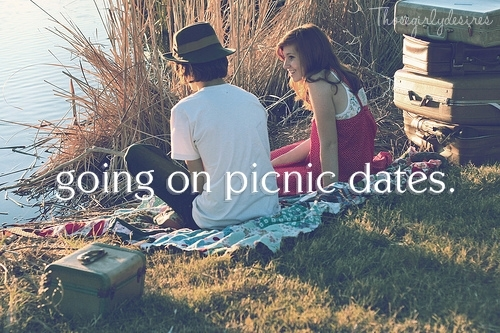 couples, date, picnic, thosegirlydesires