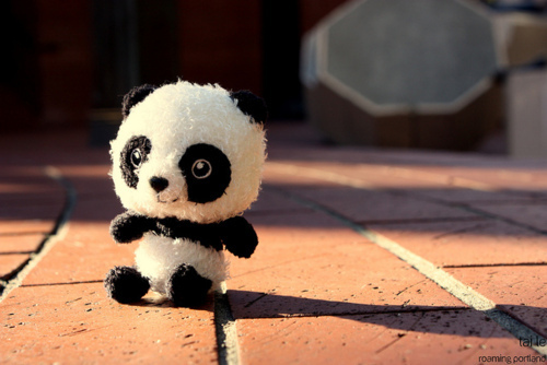 Cute panda tumblr themes - photo#24