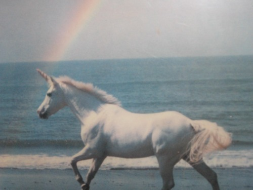 horse, sea, unicorn