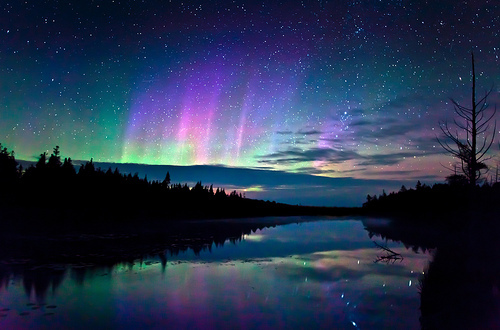 northern lights, photography, stars