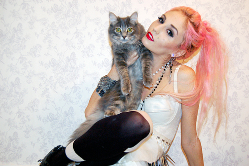 accessories, alternative, audrey kitching, cat, colored hair
