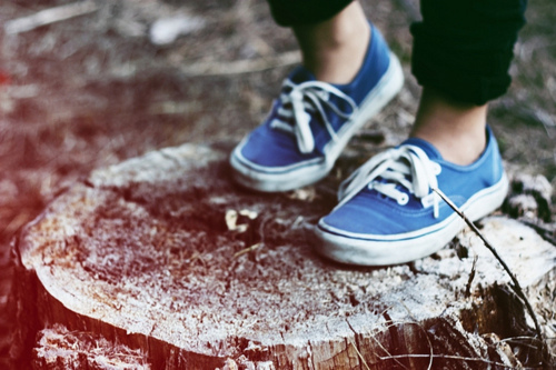 adorable, amazing, beautiful, blue, color, colour, cute, expedience, fashion, footwear, image, lace, live, nature, outside, perfect, photo, photography, shoes, style, tree stump, vans