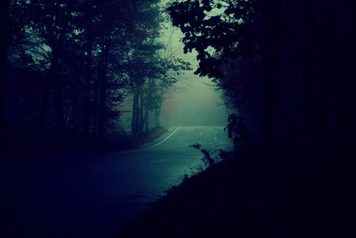 alone, blue, dark, forest, lonely, mystery, road, trees, tress, woods