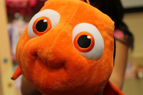 animals, clown, cute, cute :3, disney, fish, nemo, nemo peixe fofo cute, nemous, orange, photography, stuffed animal