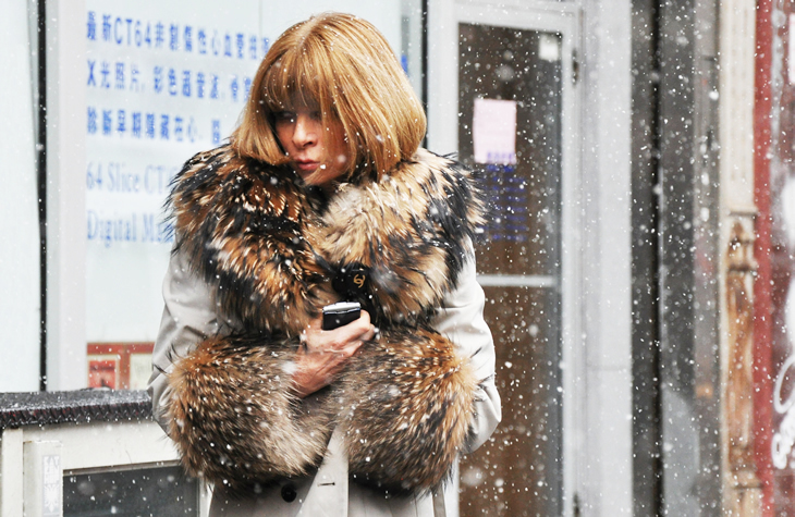 anna wintour, beautiful, blond, blonde, cool