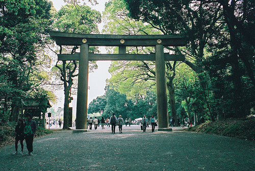 art, beautiful, city, cool, forest, green, hipster, indie, japan, nature, park, people, photo, photography, trees, woods