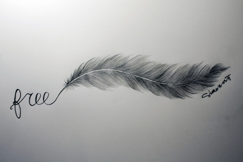 art, drawing, drawings, feather, free