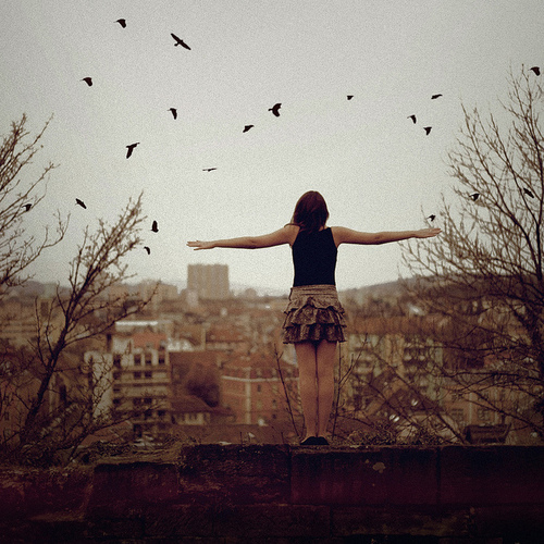 beautiful, birds, girl, photography, roof