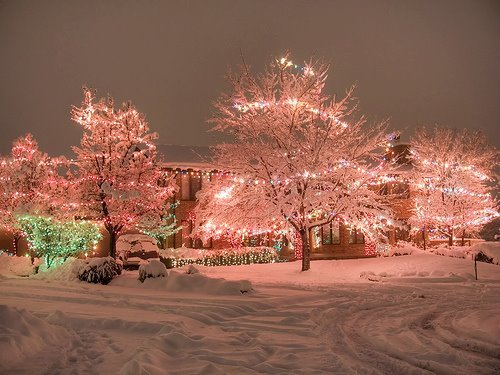 beautiful, lights, photography, snow