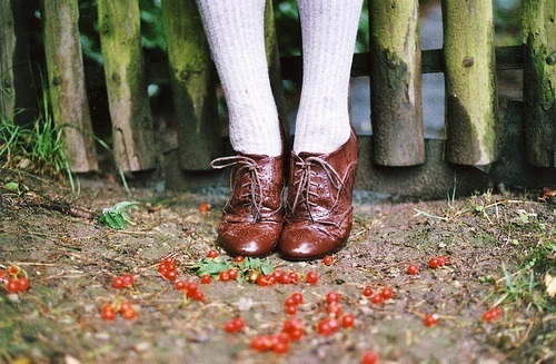 berries, brouges, clothing, fashion, fence, leather, nature, photography, shoes, socks, style, vintage