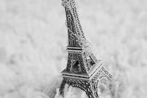 black & white, black and white, cute, eiffel tower, paris