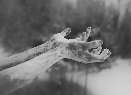 black and white, cold, frost, hands, nature, snow, winter