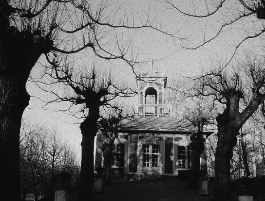 black and white, creepy, house, tree, trees