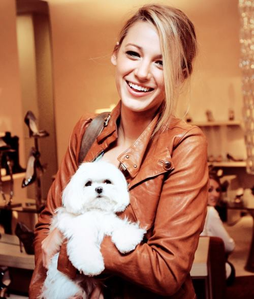 blake, blake lively, blonde, cute, dog, dress, fashion, hair, hot, makeup, pretty, puppy, serena, serena van der woodsen, smile, style