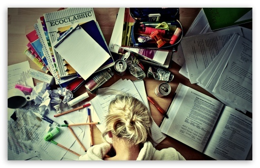 blonde, girl, gril studying, school, studies