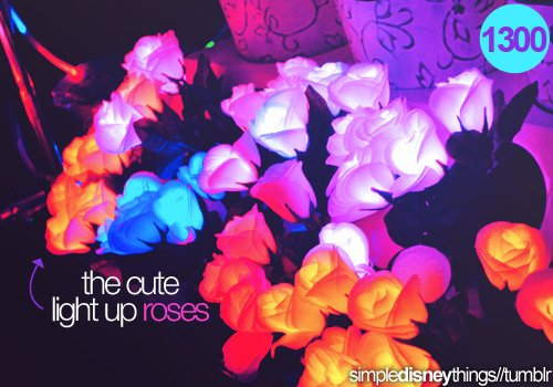 blue, colorful, colorfull, cute, disney, light up, light up roses, orange, pink, roses, white, yellow