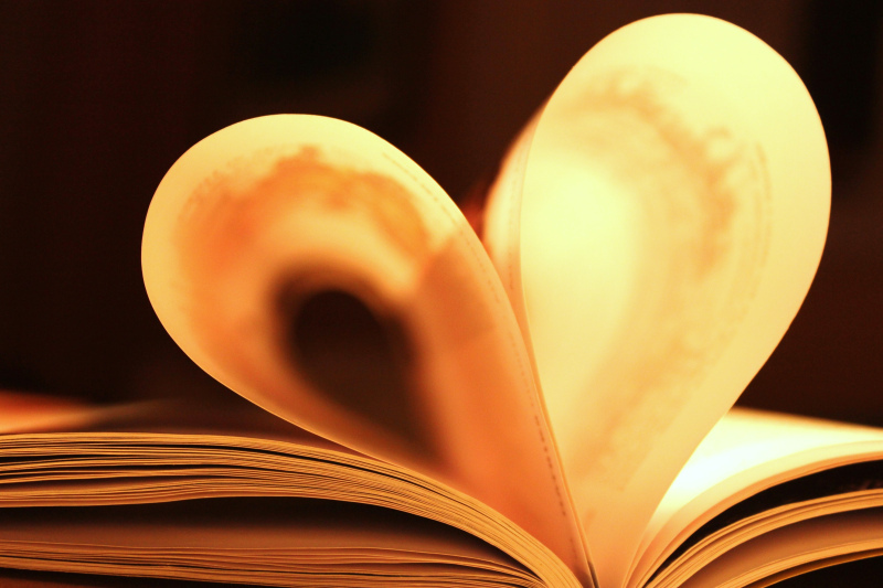 book, heart, homework, love, photography