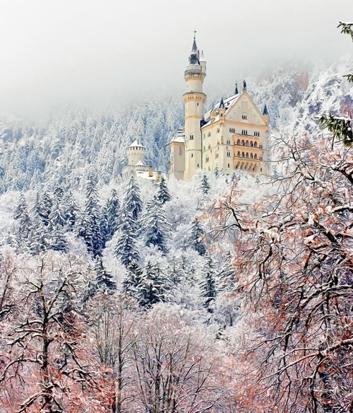castle, fairytale, house, mansion, palace, pink, pretty view, princess, rhino, snow, trees