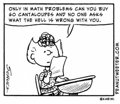 Charlie Brown Cute Funny Math True Story Image 346582